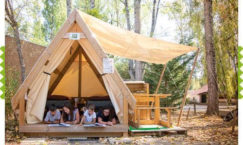 Rando Bois Camping Saules Cheverny